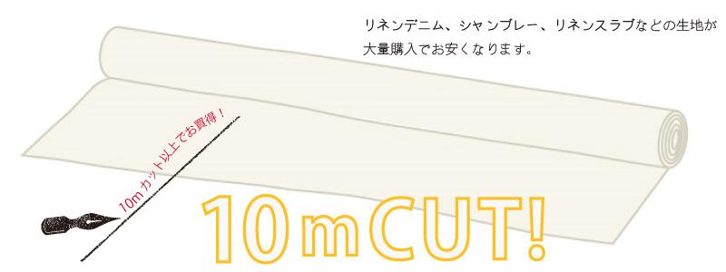 10mcut