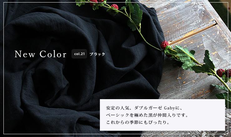 新色21ブラック